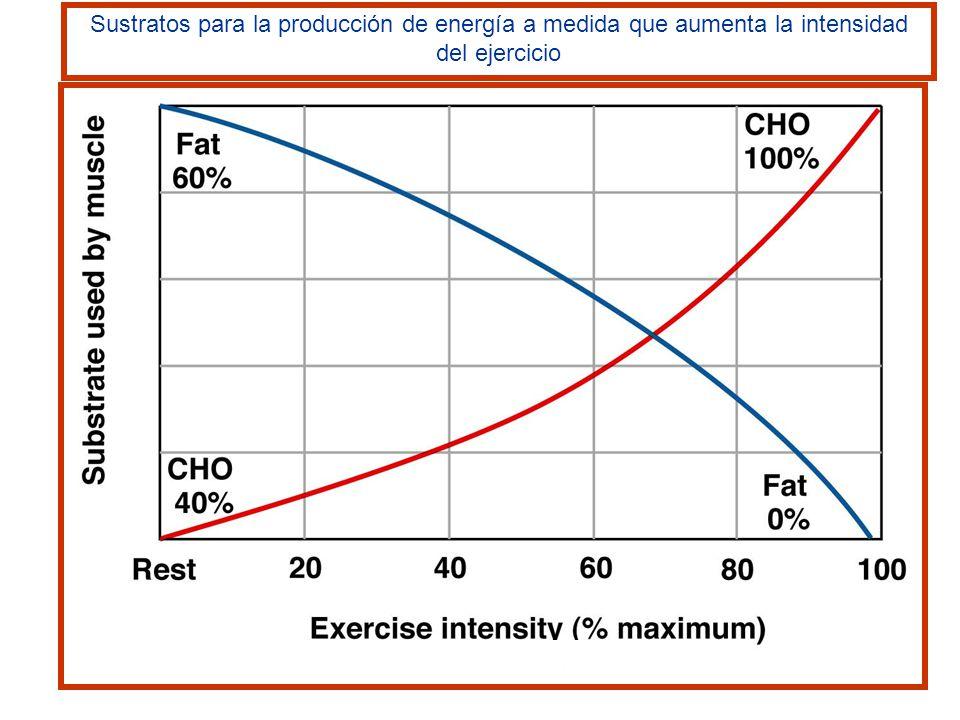 Cuando la intensidad del ejercicio es baja los músculos obtienen más E de los AG que de la glucosa.