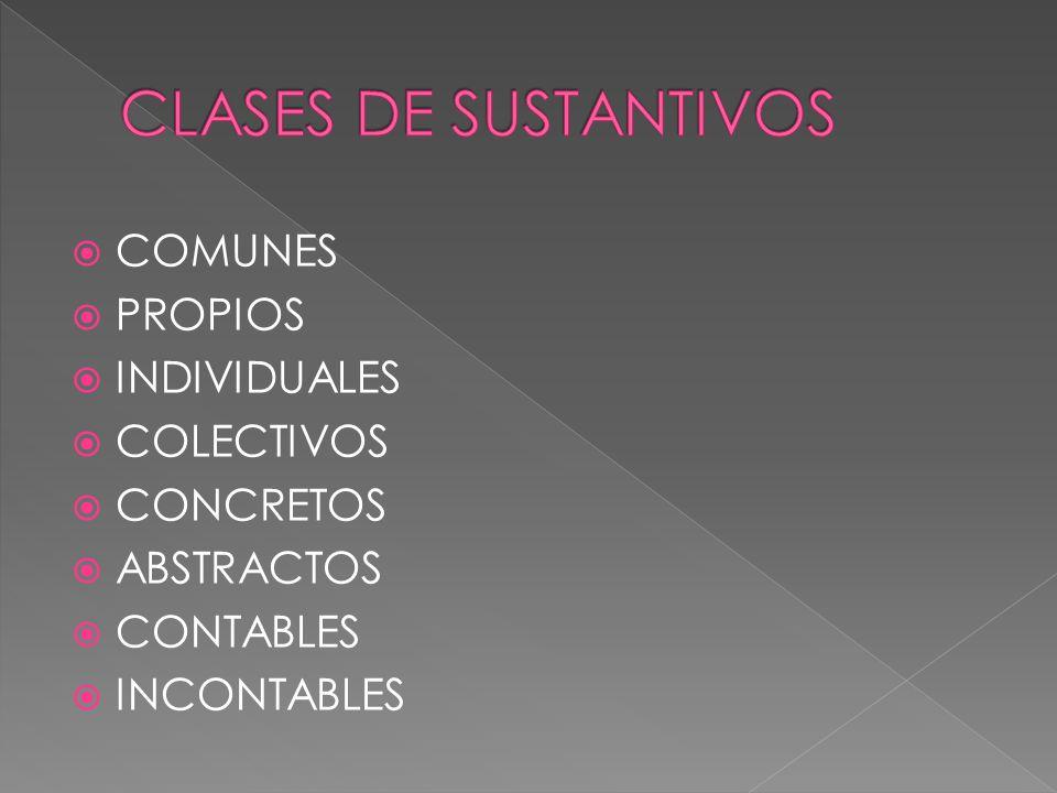 COMUNES PROPIOS INDIVIDUALES COLECTIVOS CONCRETOS ABSTRACTOS CONTABLES INCONTABLES