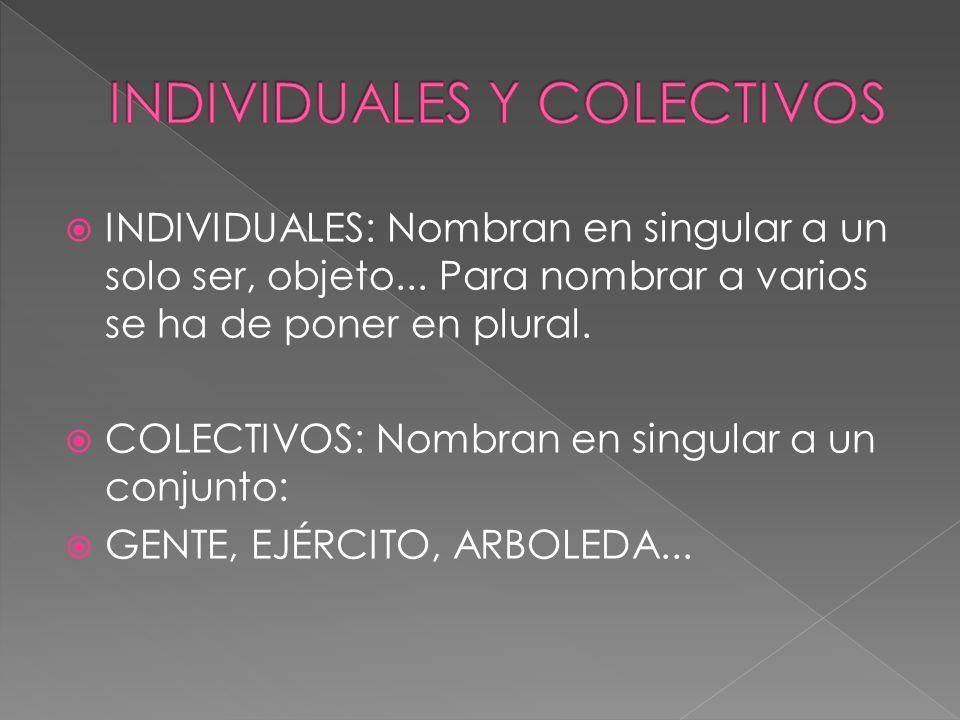 INDIVIDUALES: Nombran en singular a un solo ser, objeto... Para nombrar a varios se ha de poner en plural. COLECTIVOS: Nombran en singular a un conjun