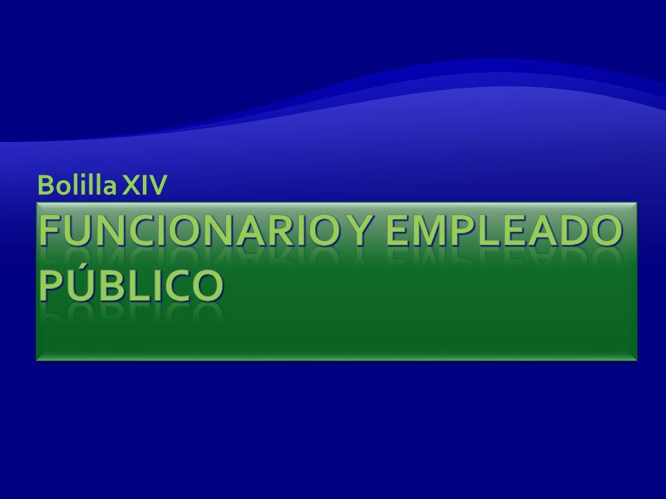 Bolilla XIV