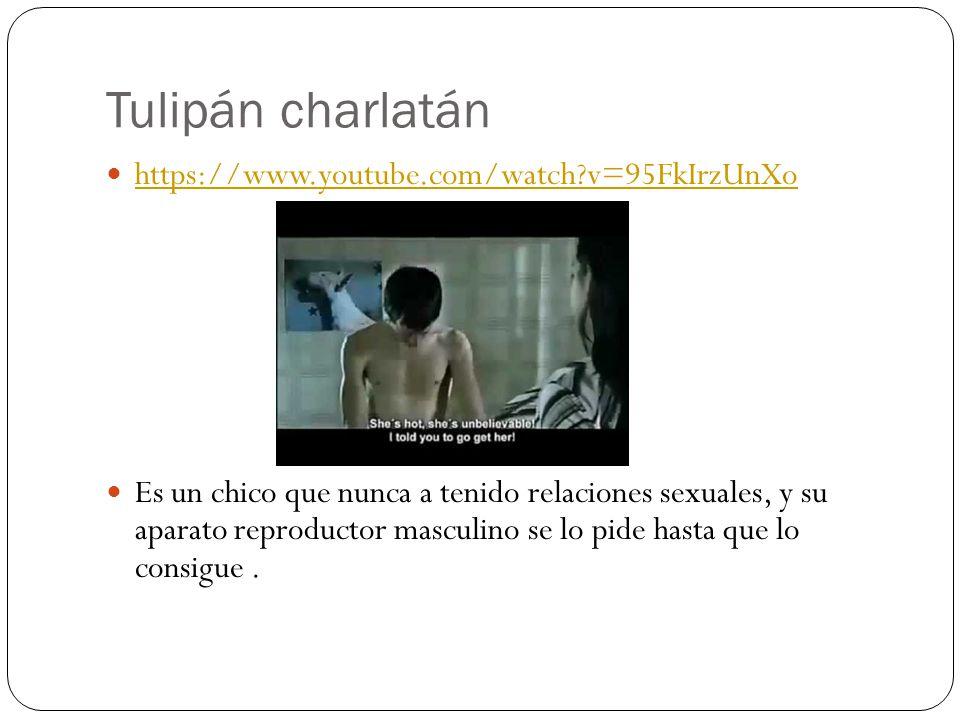 Tulipán charlatán https://www.youtube.com/watch?v=95FkIrzUnXo Es un chico que nunca a tenido relaciones sexuales, y su aparato reproductor masculino s