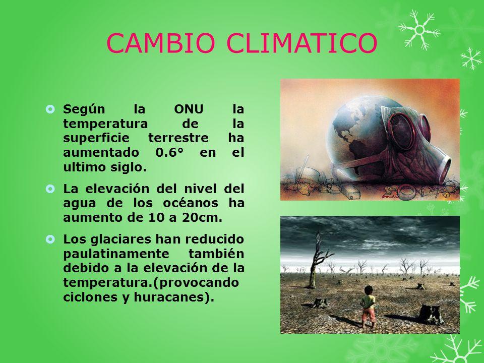 CAMBIO CLIMATICO Según la ONU la temperatura de la superficie terrestre ha aumentado 0.6° en el ultimo siglo. La elevación del nivel del agua de los o