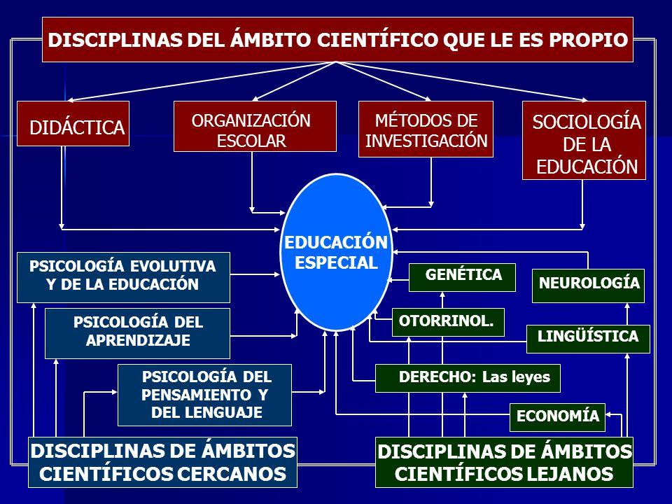 INTEGRACIÓNINCLUSIÓN Es una consecuencia del principio de normalización Es una cuestión de derechos humanos, de equidad y de lucha contra la desigualdad Se dirige de manera específica a alumnos etiquetados como alumnos de integración o con necesidades educativas especiales Se dirige a todos los alumnos y a todas las personas sin ningún tipo de discriminación La interpretación de las necesidades educativas especiales se basa en modelos ecosistémicos La interpretación de la discapacidad se basa en el modelo sociológico La integración se percibe como innovación La inclusión se percibe como reforma educativa Se centra en la intervención sobre los alumnos Continuum curricular/diferenciación La intervención gira en torno al centro y la comunidad educativa Currículum común para todos La atención en la práctica educativa se configura alrededor de los apoyos y recursos Se conciben los centros como organizaciones inclusivas Adquiere gran relevancia el papel del profesorado de apoyo interno y los servicios de apoyo externo Importancia del desarrollo profesional Plantea un continuum de integración Aspira a la inclusión total