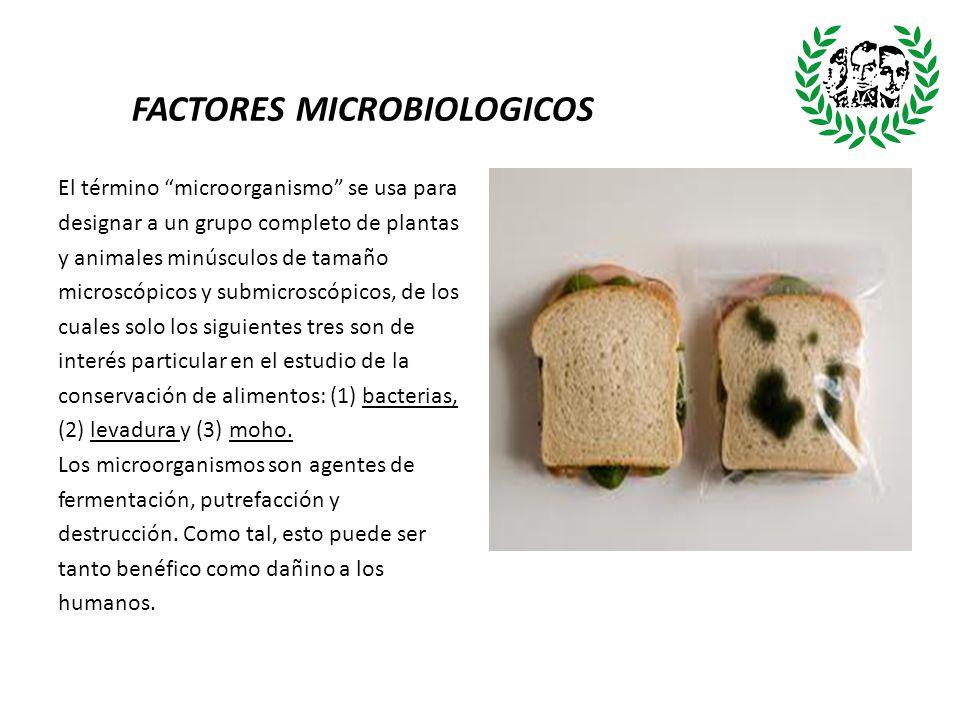 FACTORES MICROBIOLOGICOS El término microorganismo se usa para designar a un grupo completo de plantas y animales minúsculos de tamaño microscópicos y