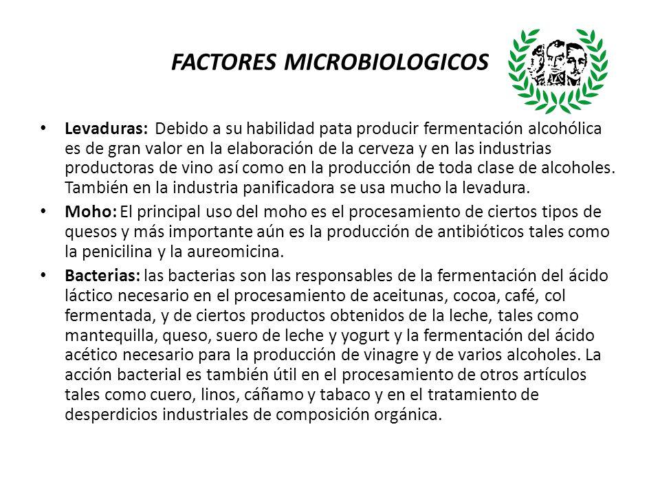 FACTORES MICROBIOLOGICOS Levaduras: Debido a su habilidad pata producir fermentación alcohólica es de gran valor en la elaboración de la cerveza y en