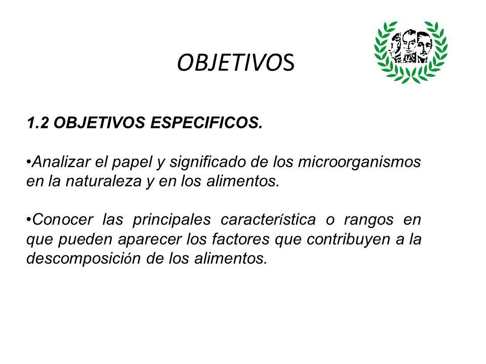OBJETIVOS 1.2 OBJETIVOS ESPECIFICOS. Analizar el papel y significado de los microorganismos en la naturaleza y en los alimentos. Conocer las principal