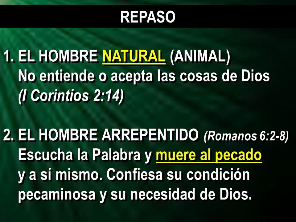 3 1.EL HOMBRE NATURAL (ANIMAL) No entiende o acepta las cosas de Dios (I Corintios 2:14) 2.EL HOMBRE ARREPENTIDO (Romanos 6:2-8) Escucha la Palabra y