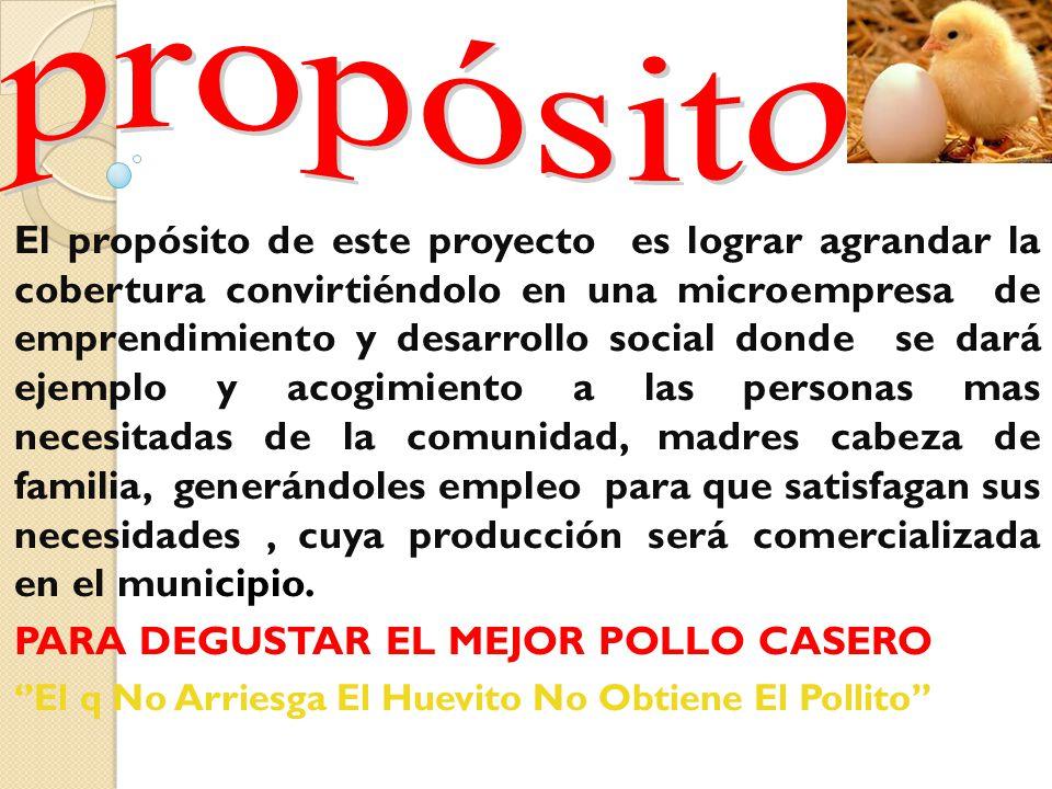 - Impulsar la producción de pollos en el municipio de San Andrés. - Mejorar la alimentación de la población mediante el consumo de carne de excelente