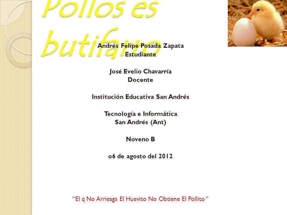- Impulsar la producción de pollos en el municipio de San Andrés.