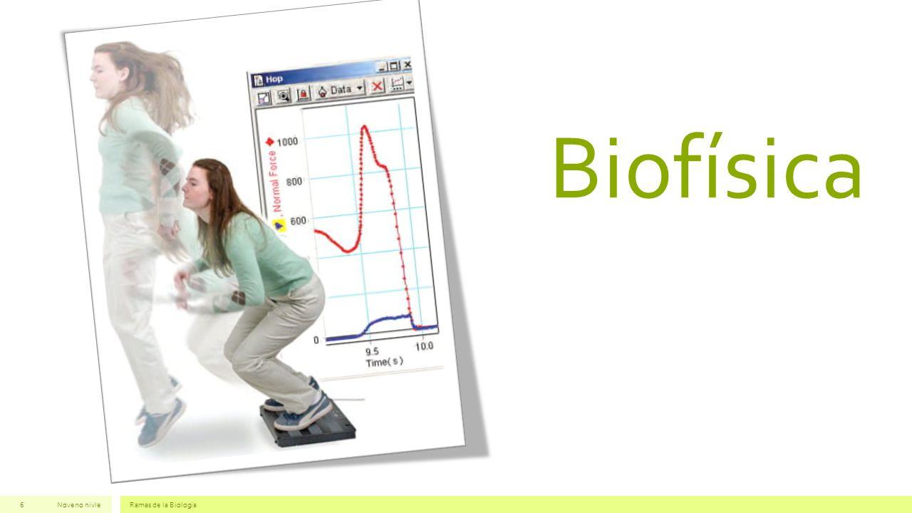 Biofísica Noveno nivleRamas de la Biología6