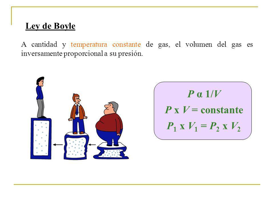 Ley de Boyle A cantidad y temperatura constante de gas, el volumen del gas es inversamente proporcional a su presión. P α 1/V P x V = constante P 1 x