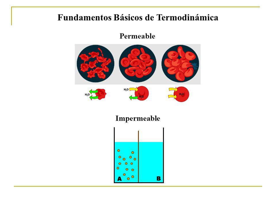 Tipos de procesos Isotérmico (T = cte) Isobárico (P = cte) Isocórico (V = cte) Adiabático(Q = 0) Irreversible o espontáneo Reversible Sistema siempre infinitesimalmente próximo al equilibrio; un cambio infinitesimal en las condiciones puede invertir el proceso.