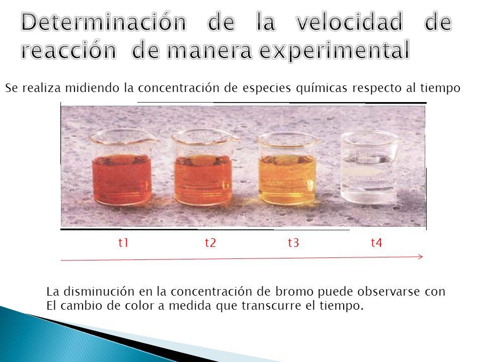 Se realiza midiendo la concentración de especies químicas respecto al tiempo La disminución en la concentración de bromo puede observarse con El cambi