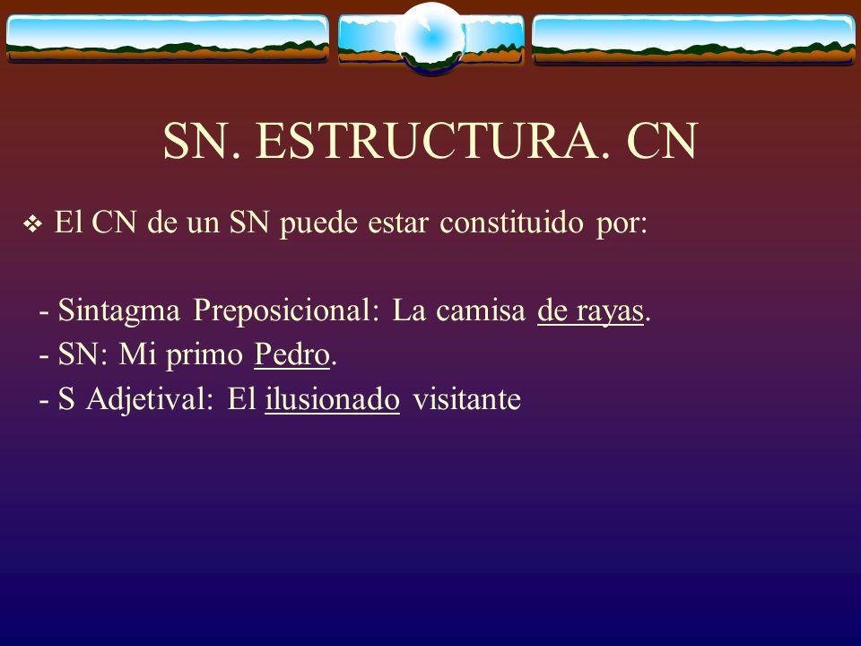 SN. ESTRUCTURA.NÚCLEO El núcleo de un SN puede estar formado por cualquiera de estos elementos: 1. Sustantivo. Ej: El edificio nuevo 2. Pronombre (sus