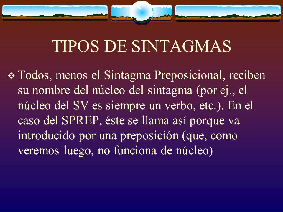 TIPOS DE SINTAGMAS Todos, menos el Sintagma Preposicional, reciben su nombre del núcleo del sintagma (por ej., el núcleo del SV es siempre un verbo, etc.).