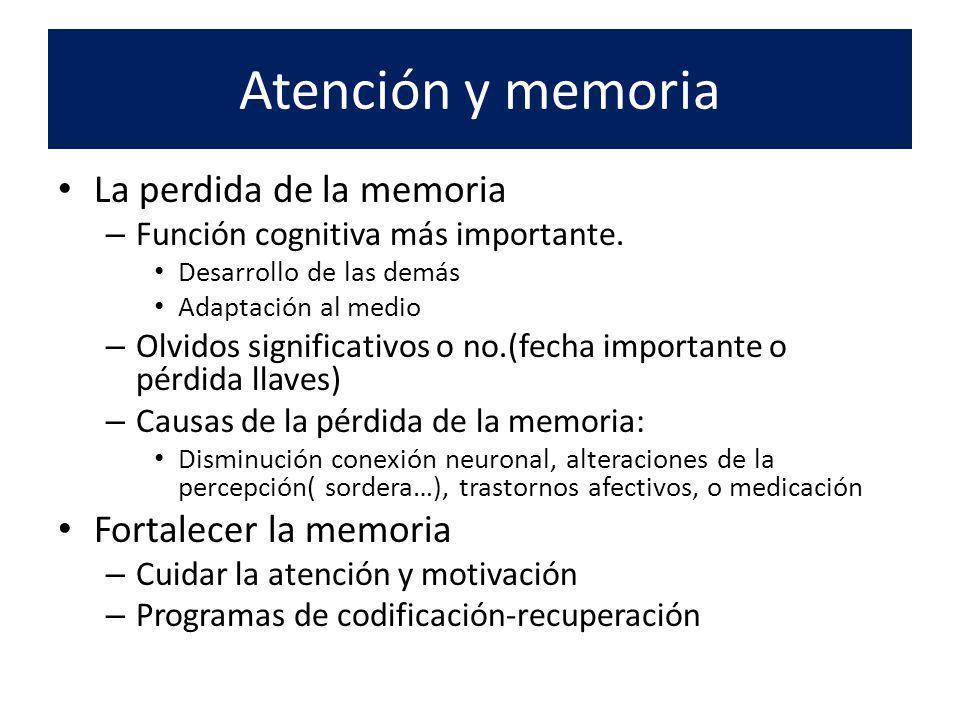 Atención y memoria La perdida de la memoria – Función cognitiva más importante. Desarrollo de las demás Adaptación al medio – Olvidos significativos o