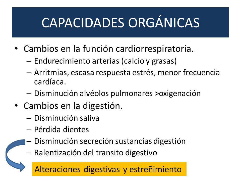 CAPACIDADES ORGÁNICAS Cambios en la función cardiorrespiratoria. – Endurecimiento arterias (calcio y grasas) – Arritmias, escasa respuesta estrés, men