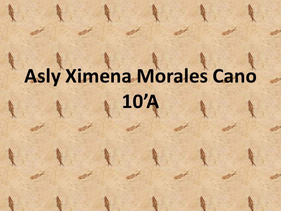 Asly Ximena Morales Cano 10A