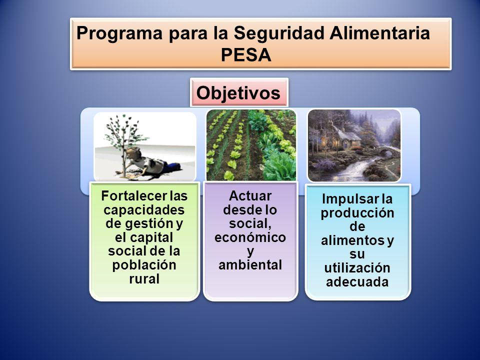 Programa para la Seguridad Alimentaria PESA Programa para la Seguridad Alimentaria PESA Propósitos Aumento de la producción y productividad de los rubros agrícolas, propiciando la generación de empleo productivo Estabilidad del nivel de disponibilidad y accesibilidad de los alimentos a la población Desarrollo rural integral vinculado al sector agrícola