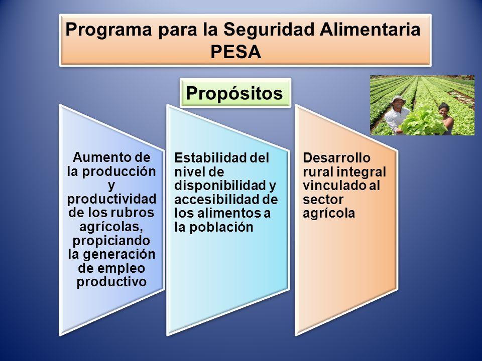 Programa para la Seguridad Alimentaria PESA Programa para la Seguridad Alimentaria PESA Propósitos Aumento de la producción y productividad de los rub