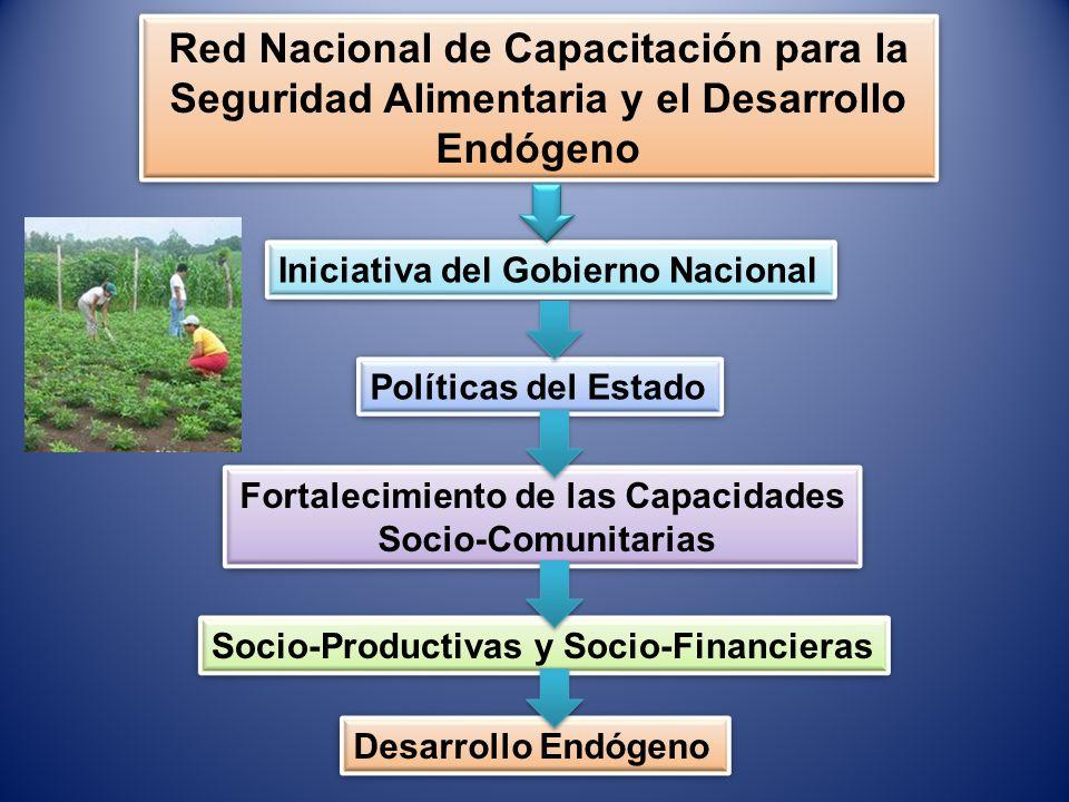 Red Nacional de Capacitación para la Seguridad Alimentaria y el Desarrollo Endógeno Iniciativa del Gobierno Nacional Políticas del Estado Fortalecimie