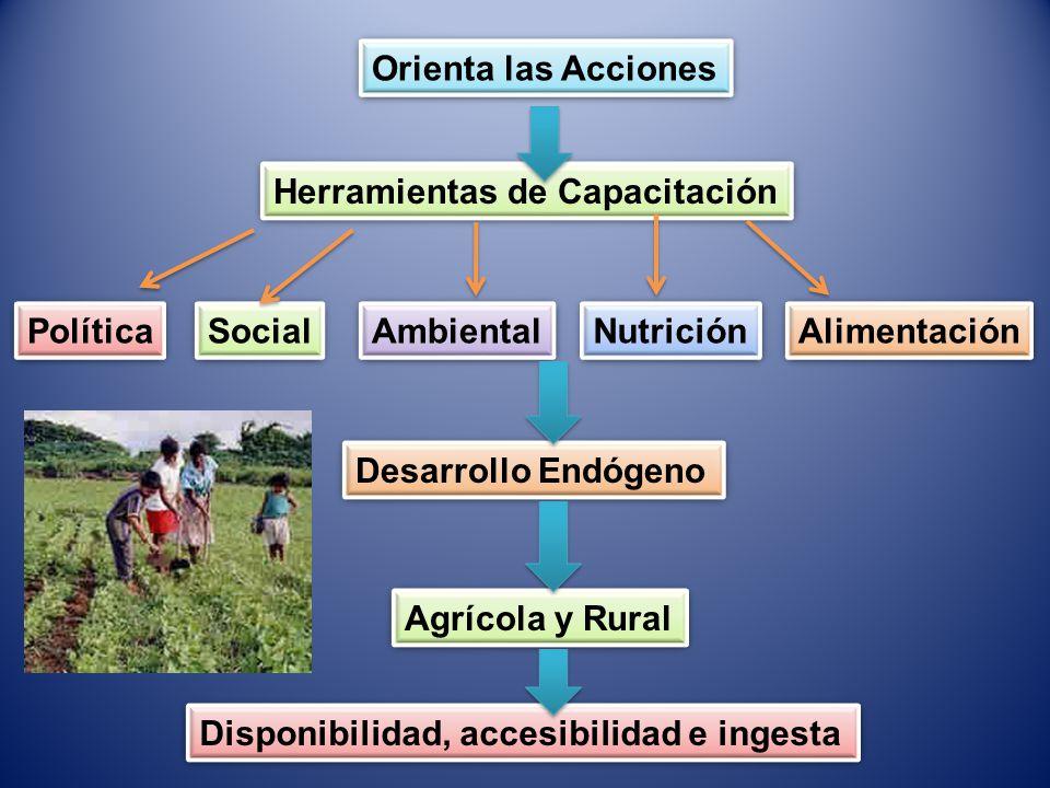 Orienta las Acciones Herramientas de Capacitación Social Política Ambiental Nutrición Alimentación Desarrollo Endógeno Agrícola y Rural Disponibilidad