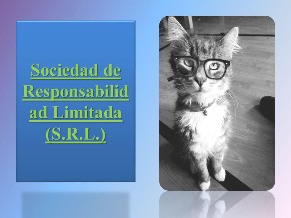 Sociedad de Responsabilid ad Limitada (S.R.L.)