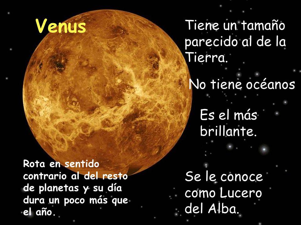 Venus Tiene un tamaño parecido al de la Tierra. Es el más brillante. Se le conoce como Lucero del Alba. No tiene océanos Rota en sentido contrario al