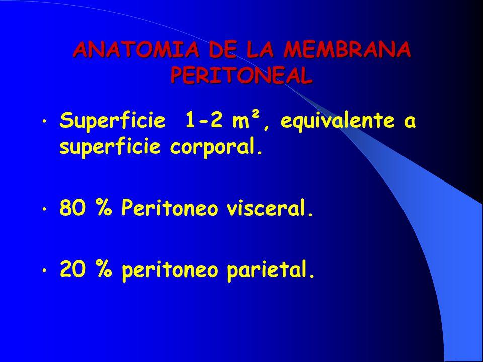 ANATOMIA DE LA MEMBRANA PERITONEAL Superficie 1-2 m², equivalente a superficie corporal. 80 % Peritoneo visceral. 20 % peritoneo parietal.