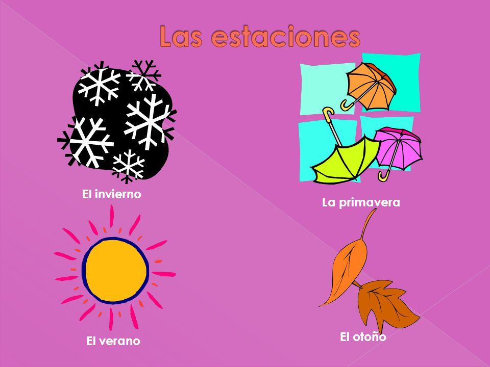 El invierno La primavera El verano El otoño
