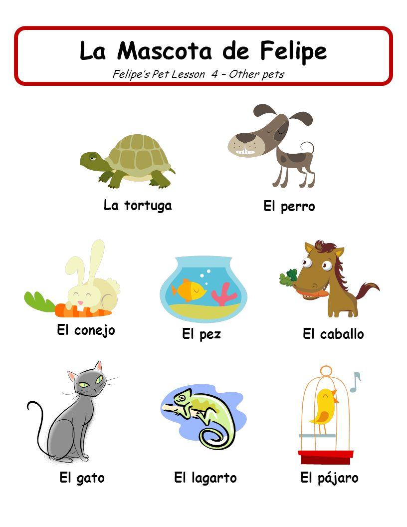 La Mascota de Felipe Felipes Pet Lesson 4 – Other pets La tortuga El pájaro El caballo El perro El conejo El gato El pez El lagarto