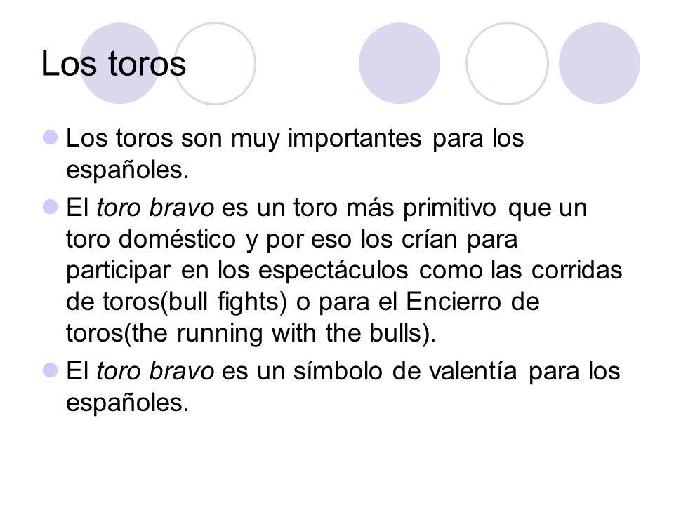 Los toros Los toros son muy importantes para los españoles. El toro bravo es un toro más primitivo que un toro doméstico y por eso los crían para part