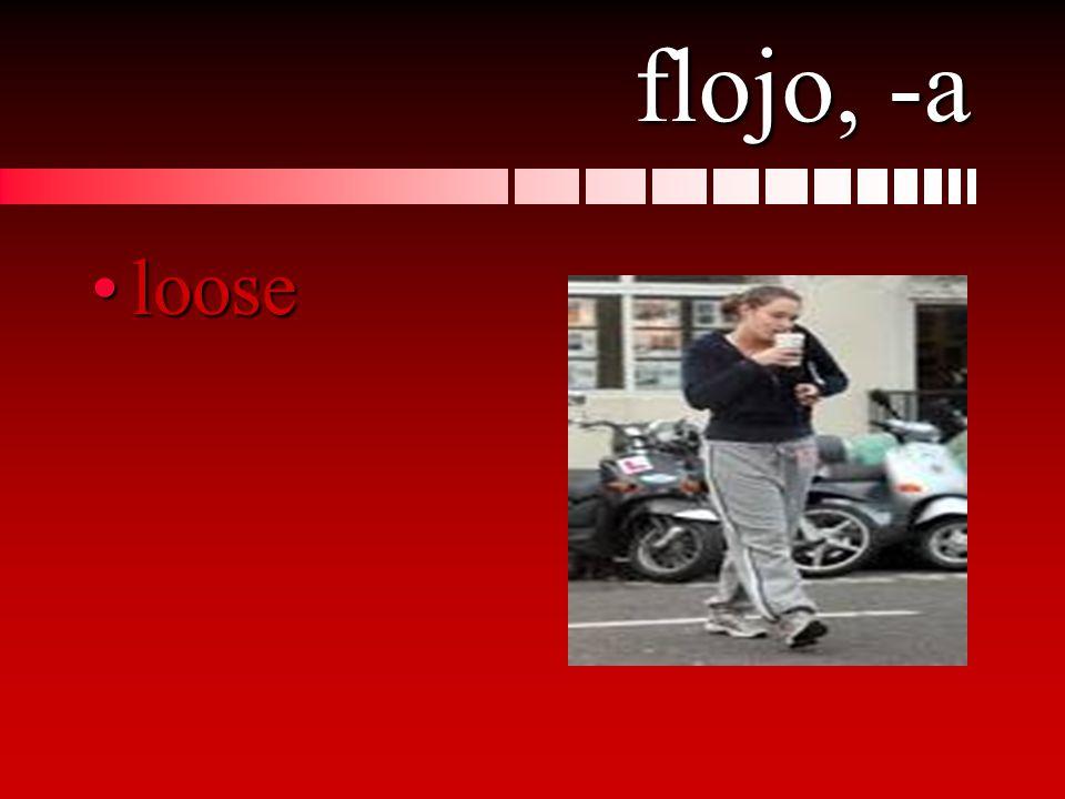 flojo, -a looseloose