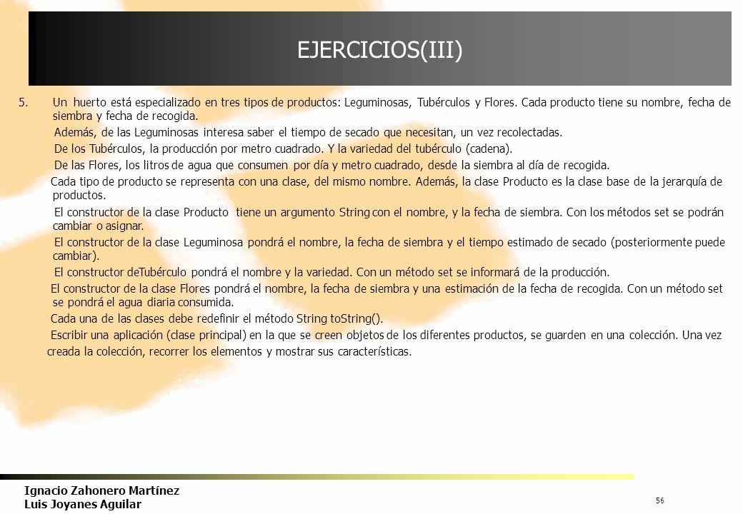 57 Ignacio Zahonero Martínez Luis Joyanes Aguilar EJERCICIOS(IV) 6.Suponer que el Huerto del ejercicio 5 está dirigido por un ingeniero agrícola y colaboran N personas.