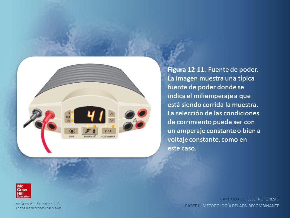 CAPÍTULO 12. ELECTROFORESIS PARTE II. METODOLOGÍA DEL ADN RECOMBINANTE Figura 12-11. Fuente de poder. La imagen muestra una típica fuente de poder don