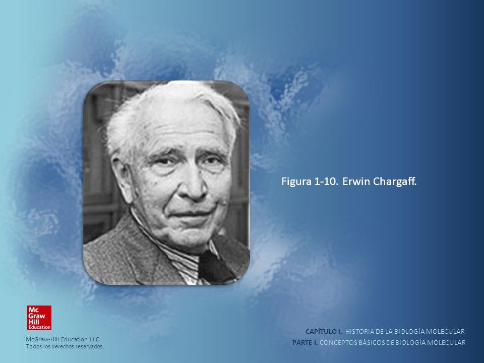 PARTE I. CONCEPTOS BÁSICOS DE BIOLOGÍA MOLECULAR CAPÍTULO I. HISTORIA DE LA BIOLOGÍA MOLECULAR Figura 1-10. Erwin Chargaff. McGraw-Hill Education LLC