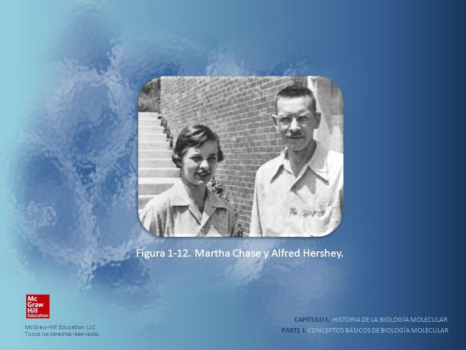 PARTE I. CONCEPTOS BÁSICOS DE BIOLOGÍA MOLECULAR CAPÍTULO I. HISTORIA DE LA BIOLOGÍA MOLECULAR Figura 1-12. Martha Chase y Alfred Hershey. McGraw-Hill