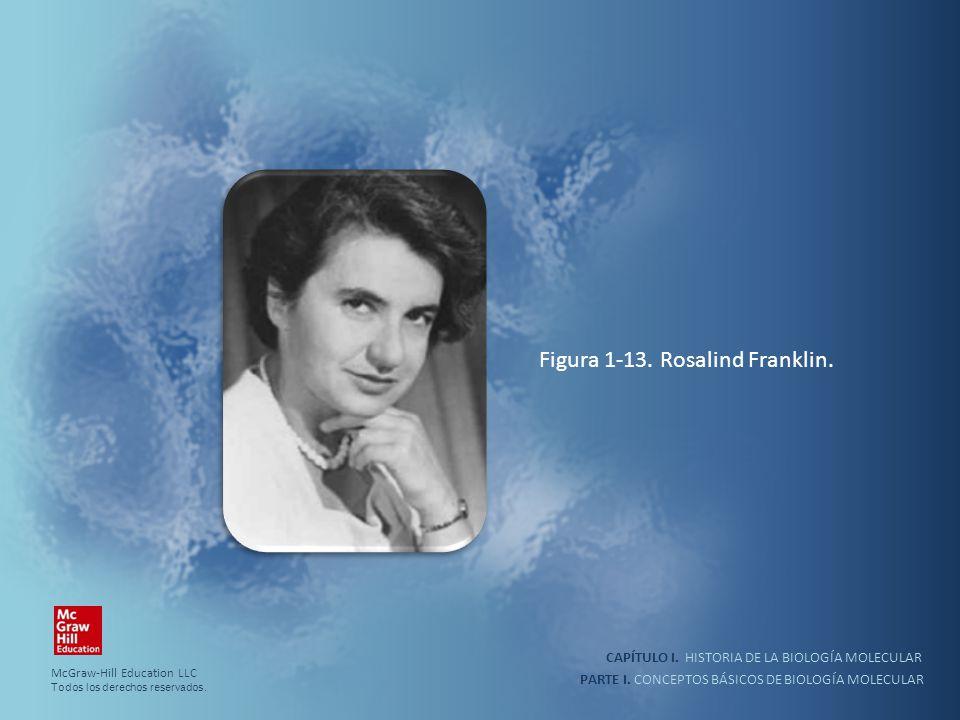 PARTE I. CONCEPTOS BÁSICOS DE BIOLOGÍA MOLECULAR CAPÍTULO I. HISTORIA DE LA BIOLOGÍA MOLECULAR Figura 1-13. Rosalind Franklin. McGraw-Hill Education L