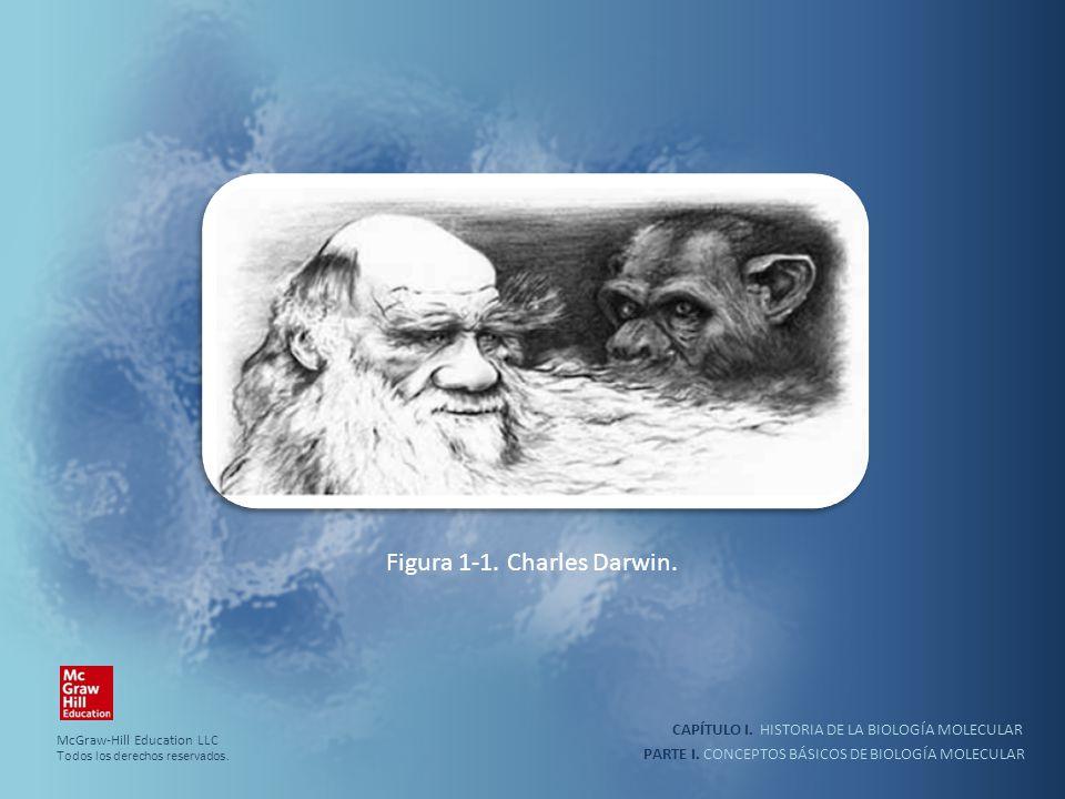 PARTE I. CONCEPTOS BÁSICOS DE BIOLOGÍA MOLECULAR CAPÍTULO I. HISTORIA DE LA BIOLOGÍA MOLECULAR Figura 1-1. Charles Darwin. McGraw-Hill Education LLC T