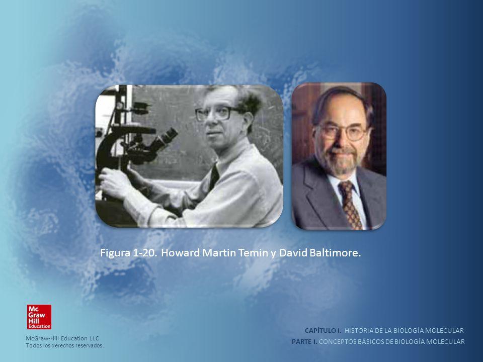 PARTE I. CONCEPTOS BÁSICOS DE BIOLOGÍA MOLECULAR CAPÍTULO I. HISTORIA DE LA BIOLOGÍA MOLECULAR Figura 1-20. Howard Martin Temin y David Baltimore. McG