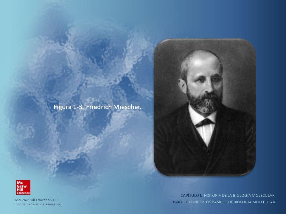 PARTE I. CONCEPTOS BÁSICOS DE BIOLOGÍA MOLECULAR CAPÍTULO I. HISTORIA DE LA BIOLOGÍA MOLECULAR Figura 1-3. Friedrich Miescher. McGraw-Hill Education L