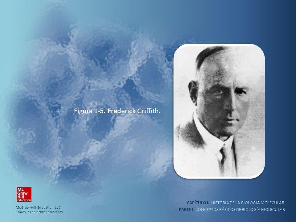 PARTE I. CONCEPTOS BÁSICOS DE BIOLOGÍA MOLECULAR CAPÍTULO I. HISTORIA DE LA BIOLOGÍA MOLECULAR Figura 1-5. Frederick Griffith. McGraw-Hill Education L