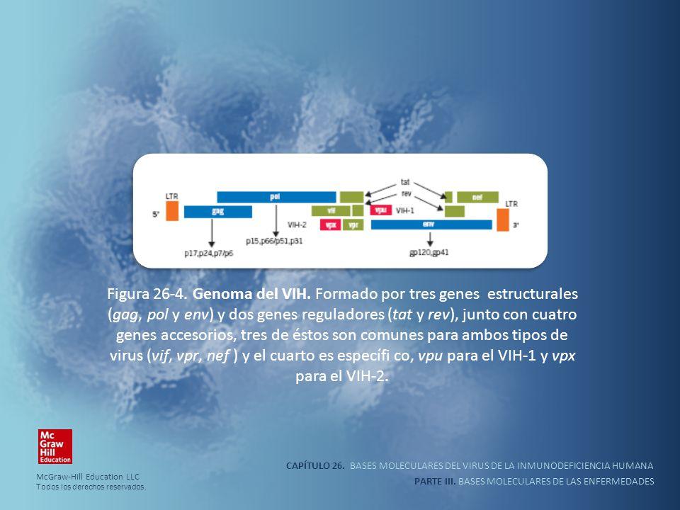 CAPÍTULO 26. BASES MOLECULARES DEL VIRUS DE LA INMUNODEFICIENCIA HUMANA PARTE III. BASES MOLECULARES DE LAS ENFERMEDADES Figura 26-4. Genoma del VIH.