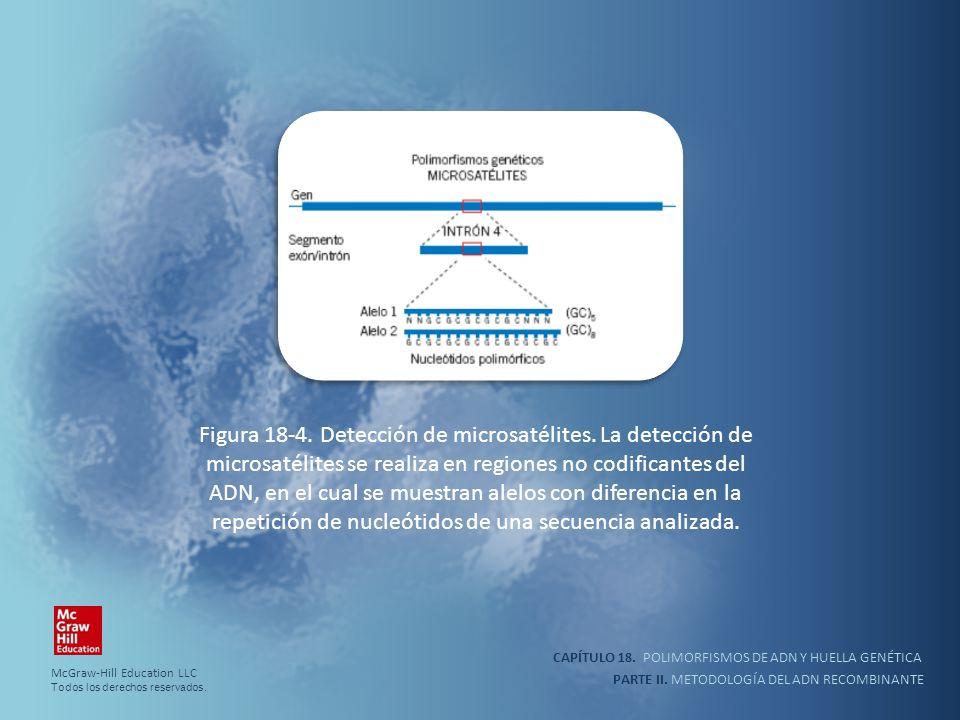 CAPÍTULO 18. POLIMORFISMOS DE ADN Y HUELLA GENÉTICA PARTE II. METODOLOGÍA DEL ADN RECOMBINANTE Figura 18-4. Detección de microsatélites. La detección