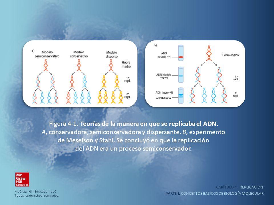 PARTE I. CONCEPTOS BÁSICOS DE BIOLOGÍA MOLECULAR CAPÍTULO 4. REPLICACIÓN Figura 4-1. Teorías de la manera en que se replicaba el ADN. A, conservadora,
