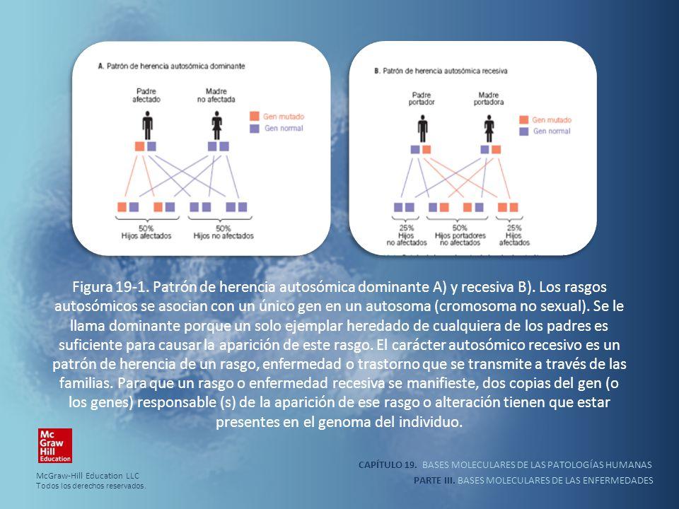 CAPÍTULO 19. BASES MOLECULARES DE LAS PATOLOGÍAS HUMANAS PARTE III. BASES MOLECULARES DE LAS ENFERMEDADES Figura 19-1. Patrón de herencia autosómica d