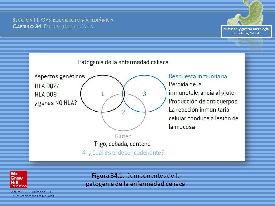 Nutrición y gastroenterología pediátrica, 1ª.Ed. S ECCIÓN III.