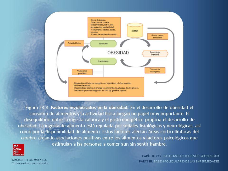 CAPÍTULO 23. BASES MOLECULARES DE LA OBESIDAD PARTE III. BASES MOLECULARES DE LAS ENFERMEDADES Figura 23-3. Factores involucrados en la obesidad. En e