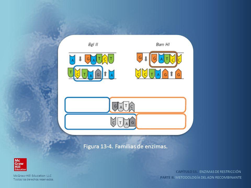 CAPÍTULO 13. ENZIMAS DE RESTRICCIÓN PARTE II. METODOLOGÍA DEL ADN RECOMBINANTE Figura 13-4. Familias de enzimas. McGraw-Hill Education LLC Todos los d