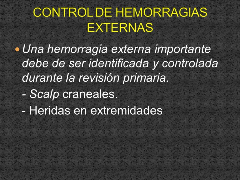 Una hemorragia externa importante debe de ser identificada y controlada durante la revisión primaria.